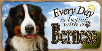 Bernese Mountain Dog_Every Day Sky sign