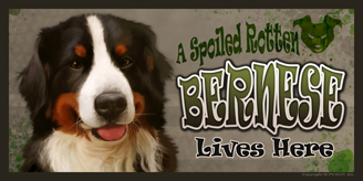 Bernese_Spoiled Rotten sign