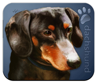 Dachshund_Dog Mouse Pad colors blue